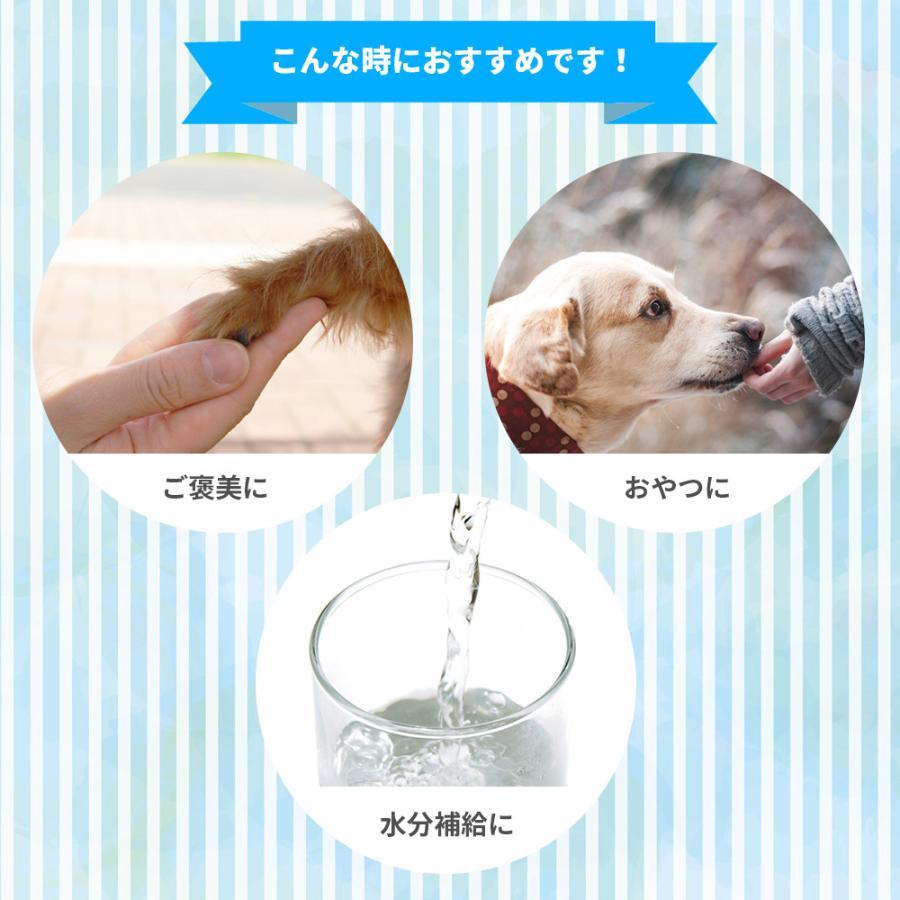【直送便】無添加ピュア 日本産 犬用おやつ いぬすむーじー  PureValue5 乳製品select キウイ グリーン 4本入【国産/ドッグフード】|drjpet|04
