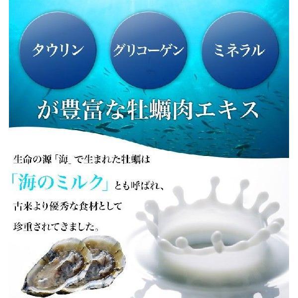 【送料無料】ドラッグピュア ピュアオイスター 120粒 海のミネラルたっぷりの牡蠣肉エキス粒 drugpure 02