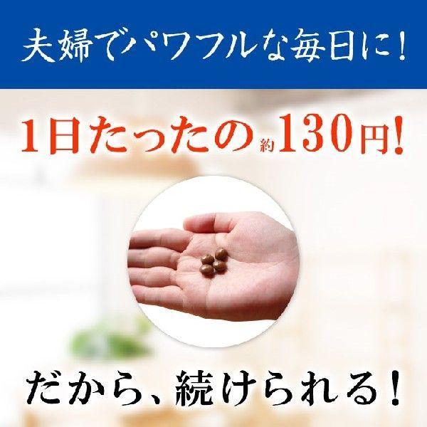 【送料無料】ドラッグピュア ピュアオイスター 120粒 海のミネラルたっぷりの牡蠣肉エキス粒 drugpure 03