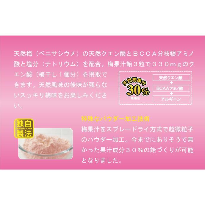 梅果汁飴 徳用袋500g ds-shop-japan 04
