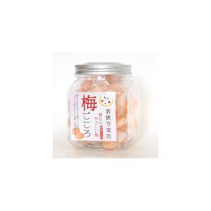 梅果汁飴 ボトル|ds-shop-japan|02