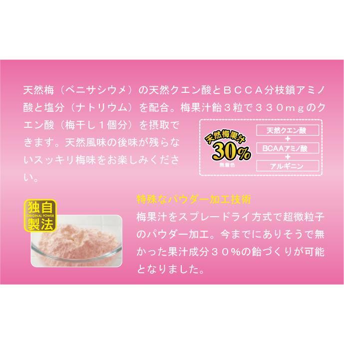 梅果汁飴 ボトル|ds-shop-japan|04
