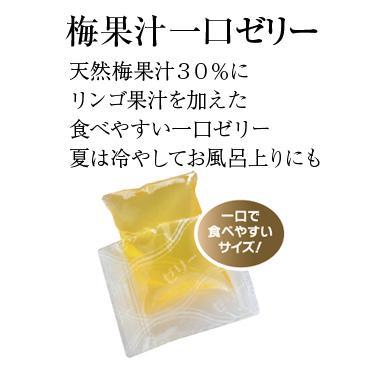 梅の宝箱ギフト|ds-shop-japan|03