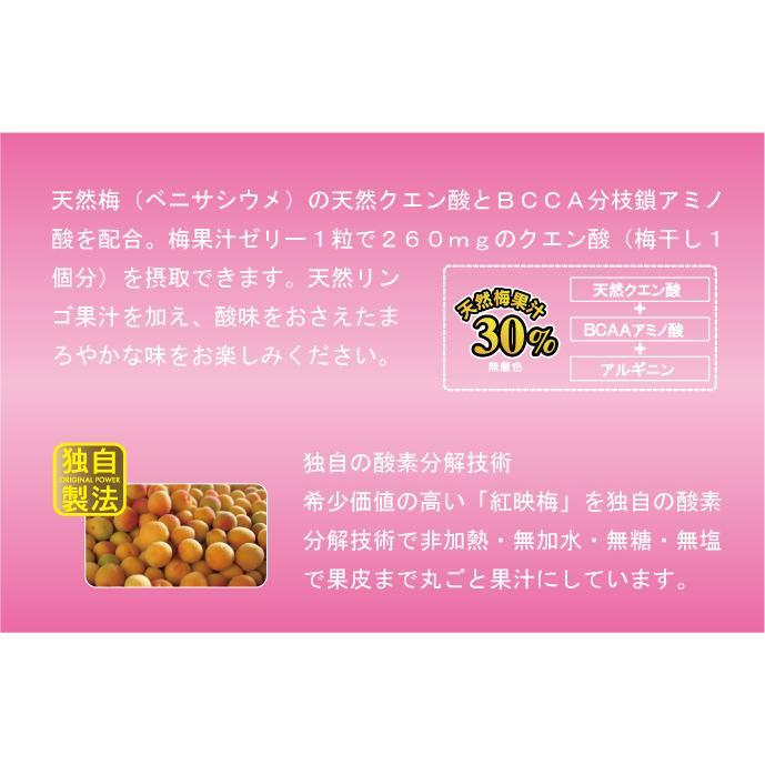 梅果汁ゼリー 徳用袋500g|ds-shop-japan|04