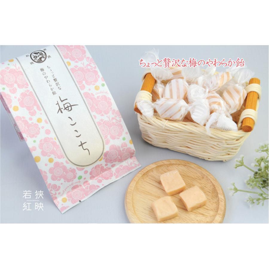 梅ここちソフトキャンディー|ds-shop-japan|02