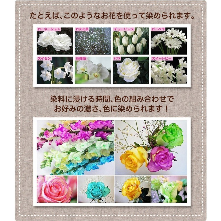 切り花染色剤 フラワーパレット 1回分×6色セット|dyestuff-chameleon|04