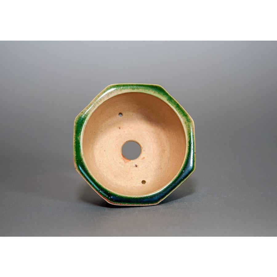 盆栽鉢 織部釉八角盆栽鉢 小品盆栽鉢 小さな盆栽鉢 p0124|e-bonsai|05