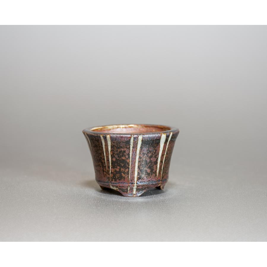 ミニ盆栽鉢 下絵付透明釉丸盆栽鉢 國井正子盆栽鉢 小さな鉢 p0402|e-bonsai