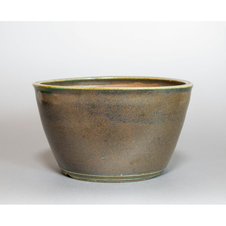 盆栽鉢 織部釉丸盆栽鉢 小品盆栽鉢 國井正子鉢 p0436|e-bonsai|02