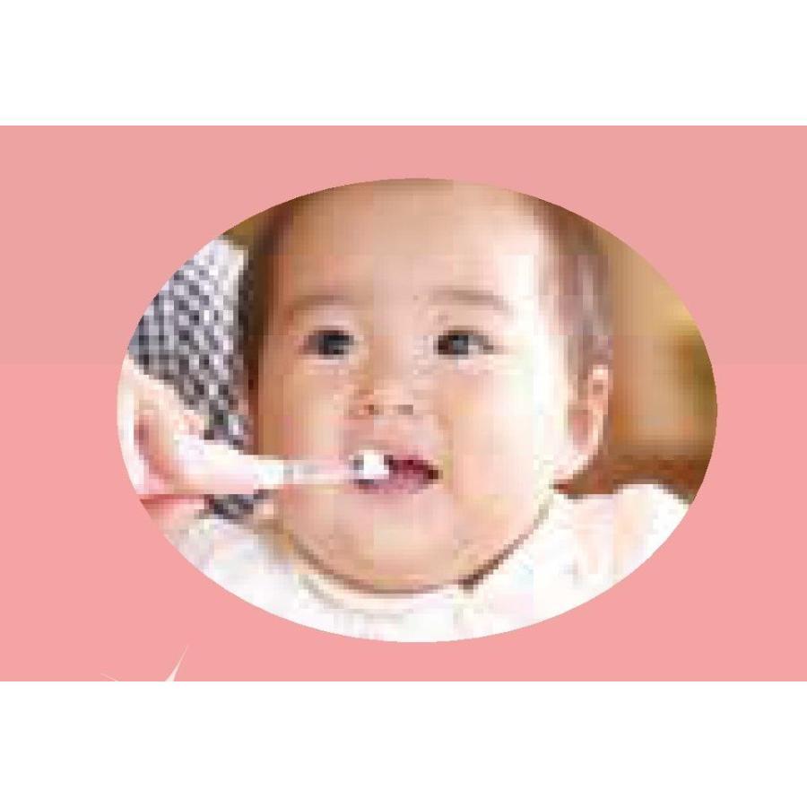 サンデンタル アオラ AORA こども用LED付電動歯ブラシ|e-dent|02