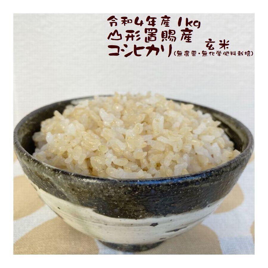 玄米 新米 1kg こしひかり 山形県東置賜郡 高畠町産 令和2年産|e-koshihikari