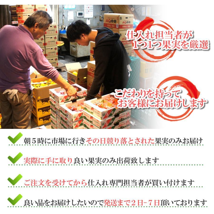 【1.7kg以上 等級 山】クラウンメロン 桐箱 山 フルーツ 食べ物 2021 高級メロン ギフト グルメ 通販 送料無料 e-mpress 06