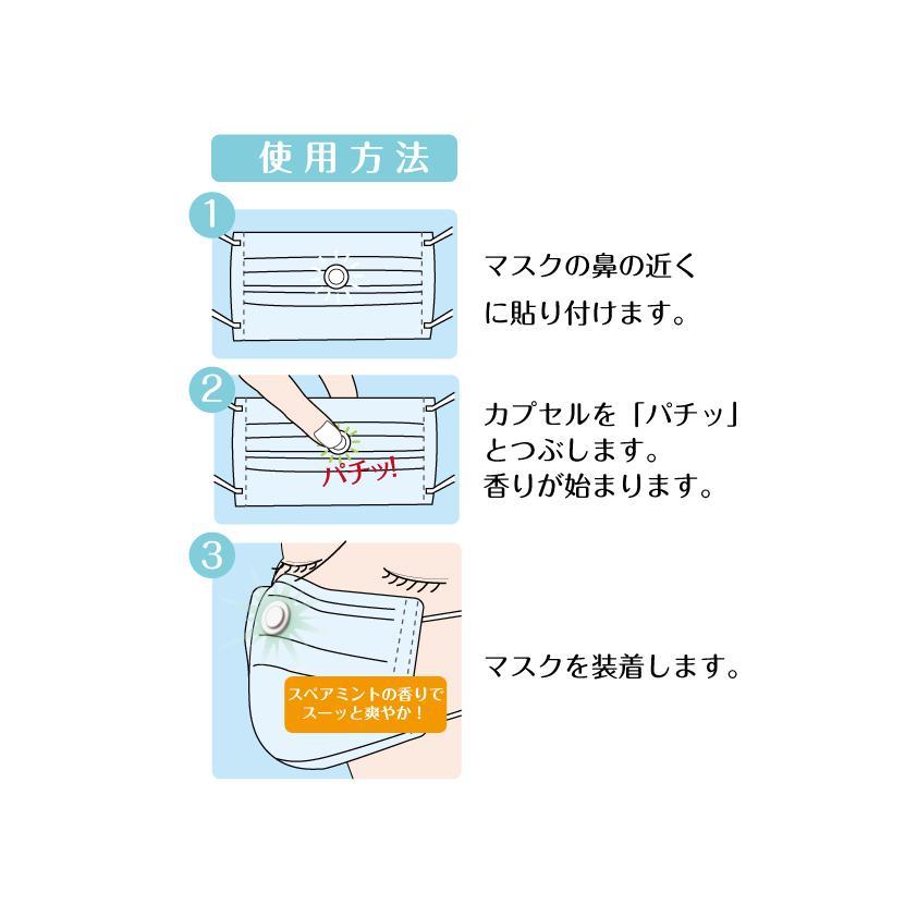 マスク用 FLAVOR BOMB フレーバーボム 1シート10粒入×2個セット 送料無料!! 選べるフレーバー・組み合わせ自由|e-shop-selection|03