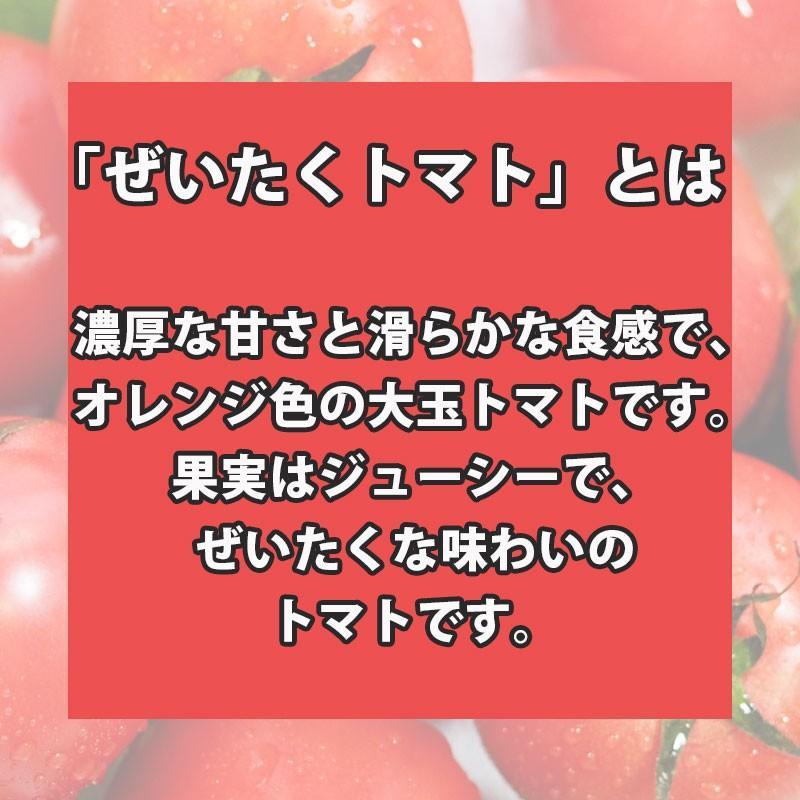 【ぜいたくトマトのトマトジュース】長野県産果汁100%/無塩・無添加・無調整/ストレートジュース/濃厚で旨味のあるぜいたくトマト/720ml2本箱入|e1093net|03