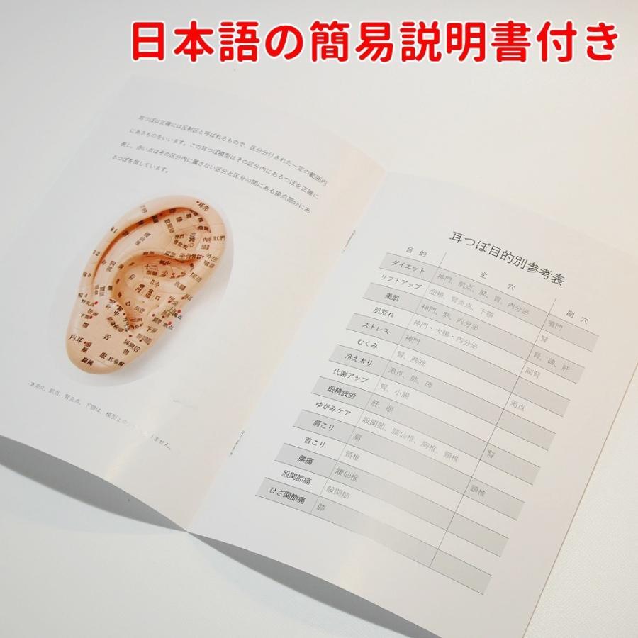 耳つぼ模型 日本語版 17cm 日本語表記 耳模型 耳介図 耳ツボ 簡易説明書付き Beautear|ear-heartdrop|03