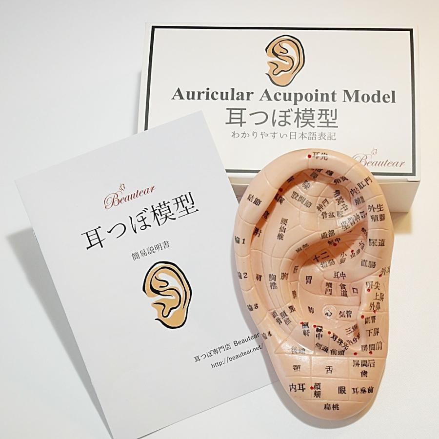 ◆Beautear Pro◆ 5点セット販売 耳つぼ模型 日本語版 17cmサイズ 日本語表記 耳模型 耳介図 Beautear|ear-heartdrop|02