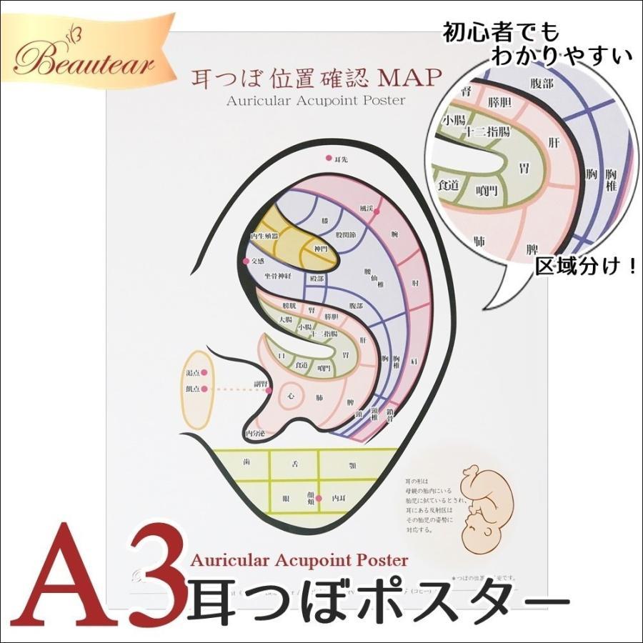 ◆Beautear Pro◆ 3点セット販売 Beauter 耳つぼポスター 位置確認 初心者向け カラー ポスター 耳介図 区域分け 耳つぼジュエリー 耳ツボ ear-heartdrop 02
