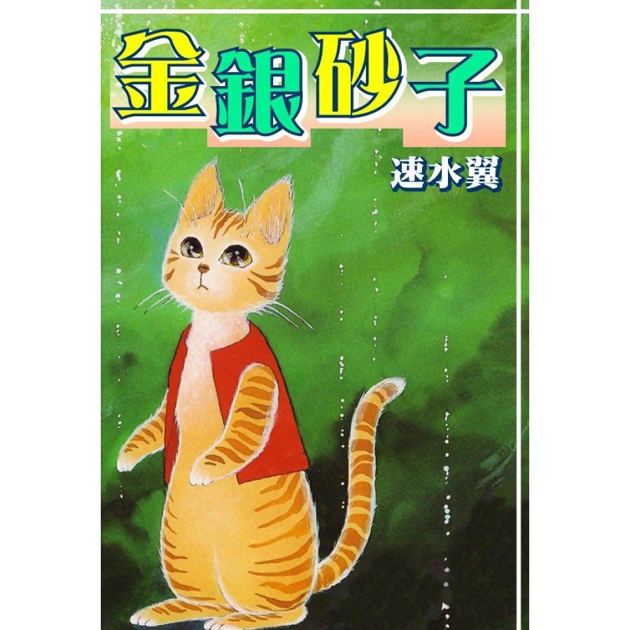 金銀砂子 電子書籍版 / 速水翼 ebookjapan