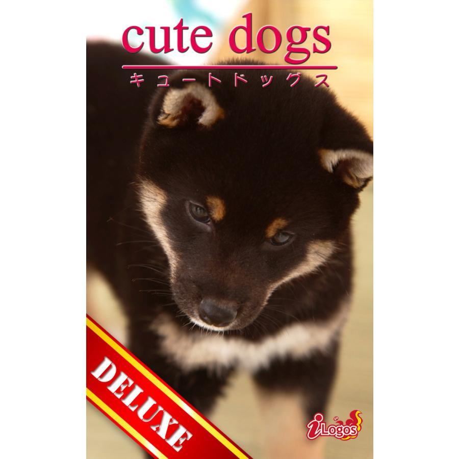 cute dogs DELUXE02 柴犬 電子書籍版 / 編集:アキバ書房|ebookjapan