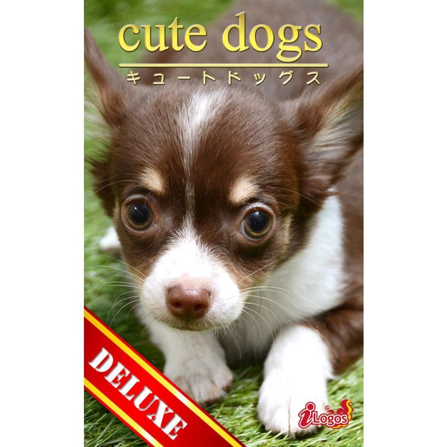 cute dogs DELUXE03 チワワ 電子書籍版 / 編集:アキバ書房|ebookjapan