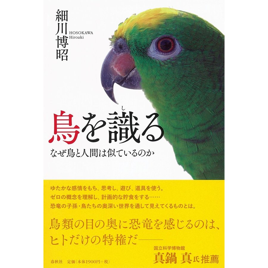 【初回50%OFFクーポン】鳥を識る 電子書籍版 / 細川博昭 ebookjapan