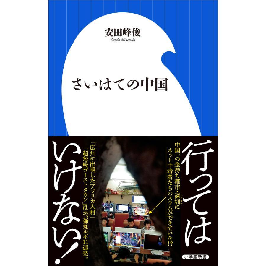 さいはての中国(小学館新書) 電子書籍版 / 安田峰俊 ebookjapan