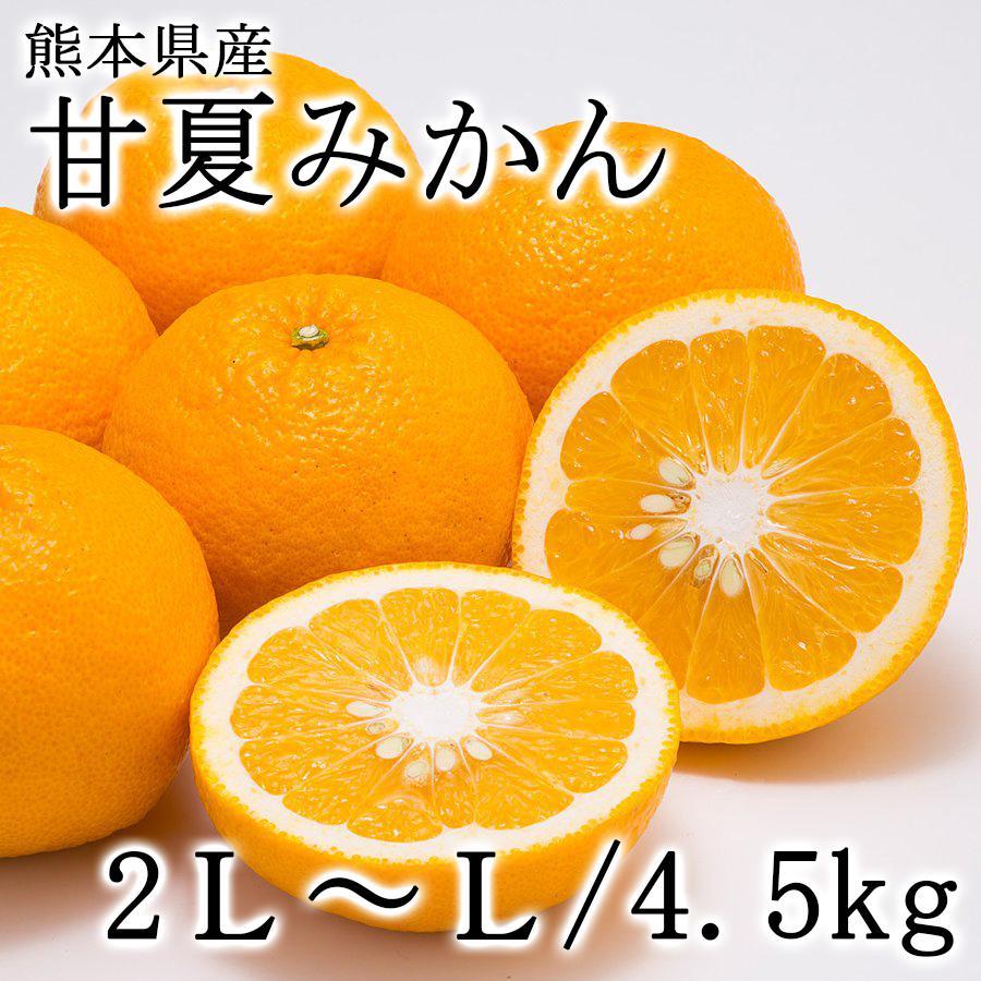 熊本県産 柑橘 甘夏みかん【約4.5kg・Lサイズ10〜13個入】|ec-kumakaren