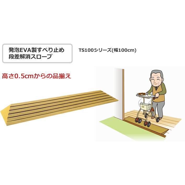 シンエイテクノ タッチスロープ TS-100-25 100cm(幅)×9.5cm(奥行) ×2.5cm(高さ) 100-25 ecare 02