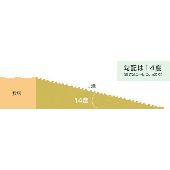 シンエイテクノ タッチスロープ TS-100-25 100cm(幅)×9.5cm(奥行) ×2.5cm(高さ) 100-25 ecare 06