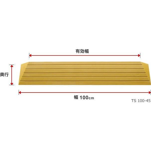シンエイテクノ タッチスロープ TS-100-25 100cm(幅)×9.5cm(奥行) ×2.5cm(高さ) 100-25 ecare 08
