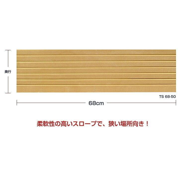 シンエイテクノ タッチスロープ TS-68-25 68cm(幅)×9.5cm(奥行) ×2.5cm(高さ) 68-25|ecare|03