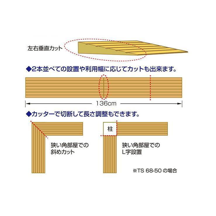 シンエイテクノ タッチスロープ TS-68-25 68cm(幅)×9.5cm(奥行) ×2.5cm(高さ) 68-25|ecare|04