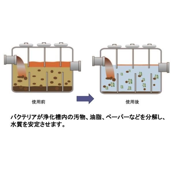 ROEBIC K-37JD 946ml|浄化槽用(合併浄化槽・単独浄化槽)保守メンテナンスバクテリア製剤 浄化槽の消臭 臭い消し 汲取りトイレも可|ececo|03