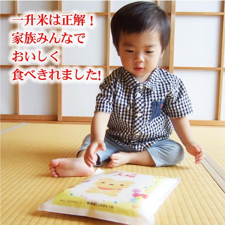一升米 一歳 一升餅 の代わり 米 新潟産 コシヒカリ 1.5kg 1升米 一生米|echigo-komesho|06