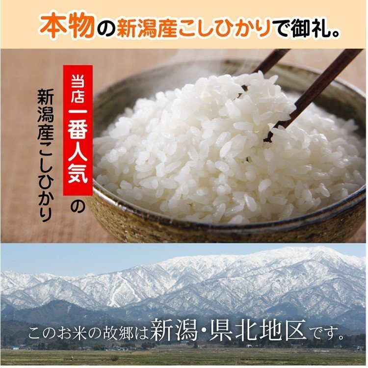 退職 お礼 プチギフト 新潟産 コシヒカリ 2合 真空パック 米 オシャレ|echigo-komesho|06