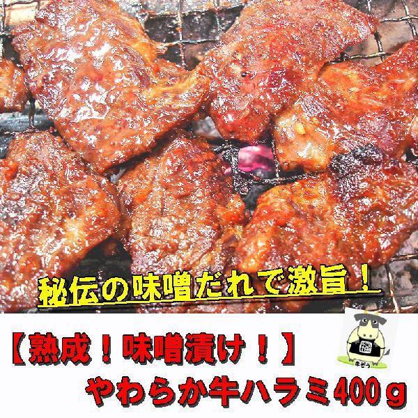 熟成みそ漬けやわらか牛上ハラミ 400g 焼肉 ホルモン B級グルメ|echizennohorumonya