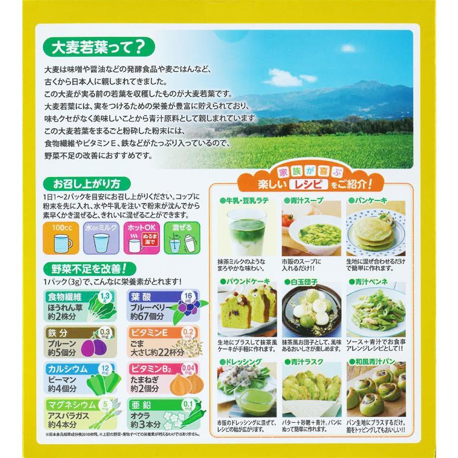 日本薬健 金の青汁 純国産大麦若葉 90包入|eckyorindo2525|02