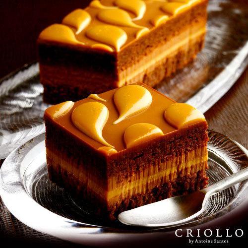 スイーツ ギフト お取り寄せ キャラメル・ショック 濃厚チョコレートケーキ 生ケーキ   冷凍便 ecole-criollo