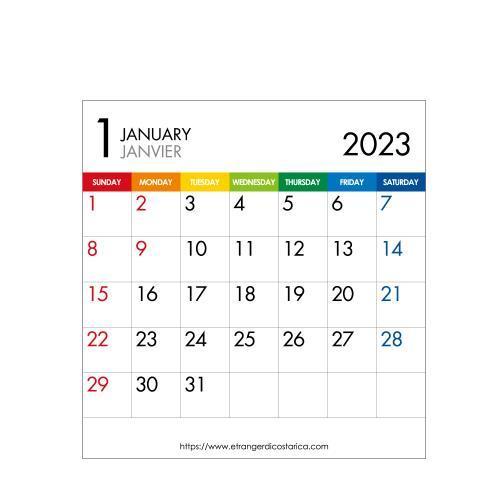 カレンダー 卓上 CD 2022年 1月始まり カラーバー シンプル 公式通販サイト