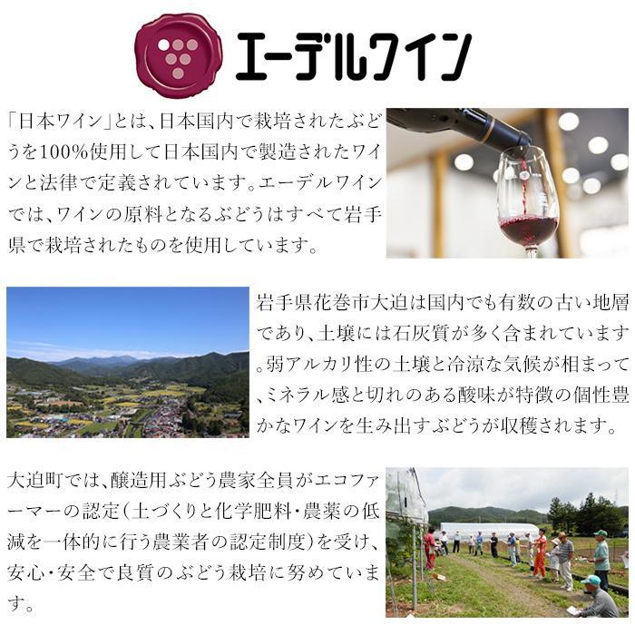 エーデルワイン シルバー 大迫メルロー 2018 赤ワイン 辛口 ミディアムボディ|edelwein|05