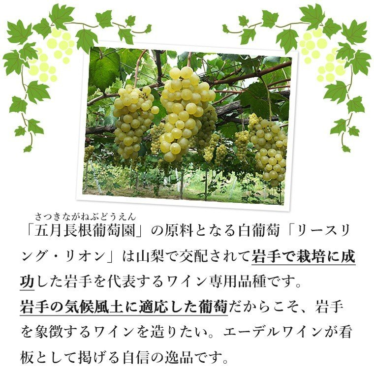 エーデルワイン 五月長根 リースリング・リオン 白ワイン やや辛口 edelwein 06
