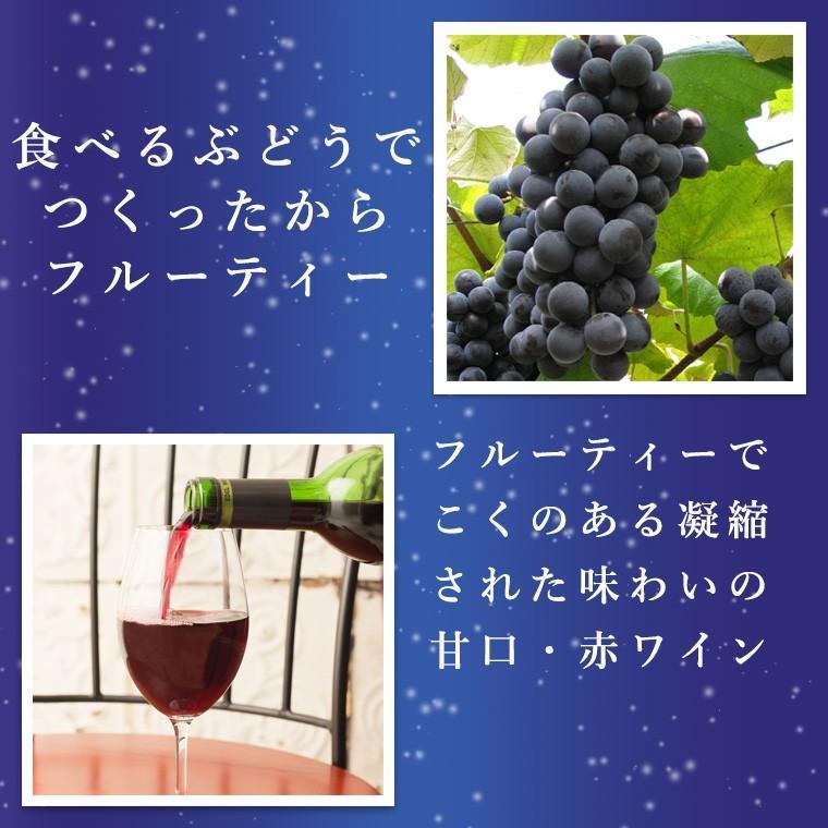 エーデルワイン 月プレミアム 赤ワイン 甘口|edelwein|03
