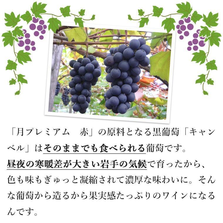 エーデルワイン 月プレミアム 赤ワイン 甘口|edelwein|05