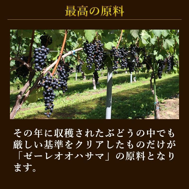 エーデルワイン ゼーレ オオハサマ ツヴァイゲルトレーベ樽熟成2017 赤ワイン フルボディ|edelwein|03