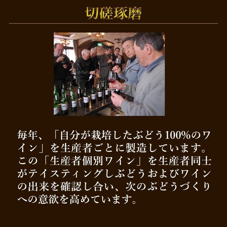 エーデルワイン ゼーレ オオハサマ ツヴァイゲルトレーベ樽熟成2017 赤ワイン フルボディ|edelwein|07