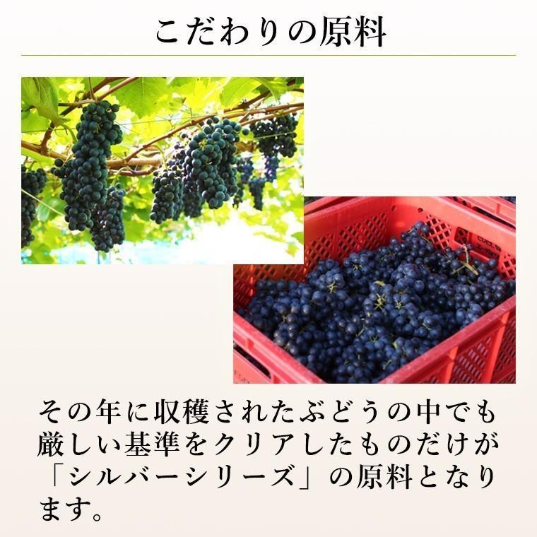 エーデルワイン シルバー ツヴァイゲルトレーベ2017 赤ワイン ミディアムボディ|edelwein|04