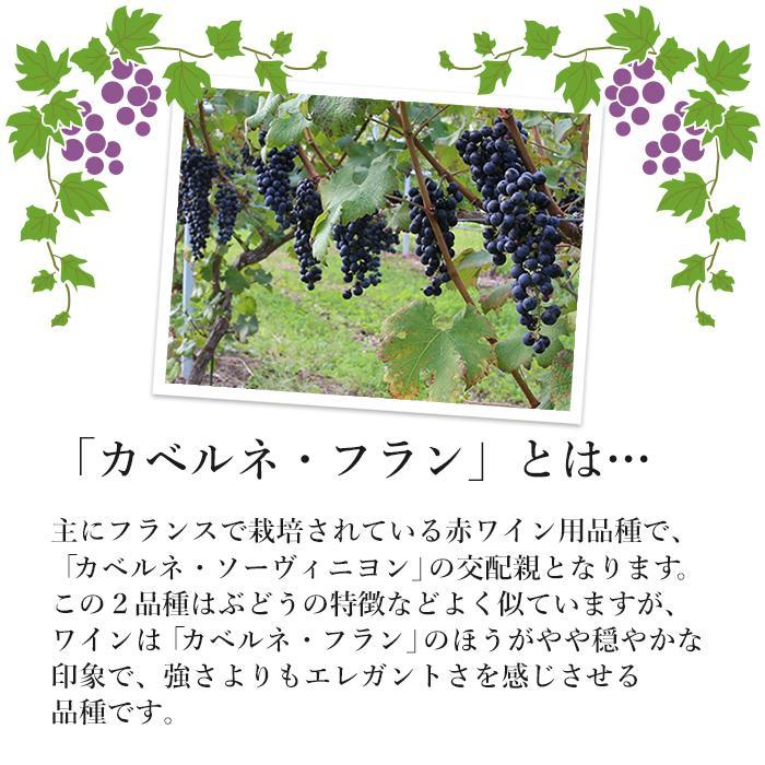 エーデルワイン フラン・ブラン 白ワイン|edelwein|05