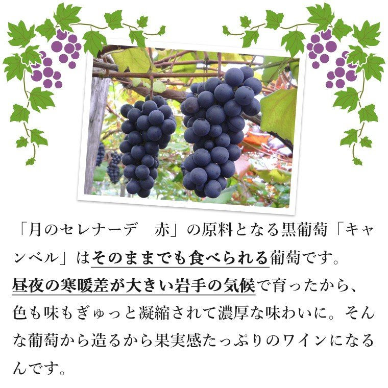 エーデルワイン 月のセレナーデ 2本セット 赤白 ワインセット 甘口 (送料込)|edelwein|04