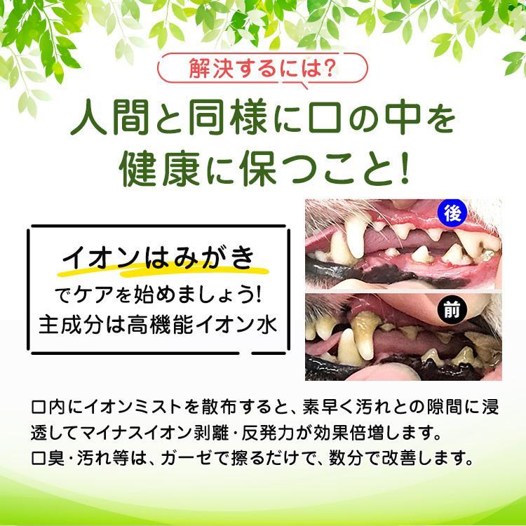 イオン 犬 はみがき 無添加 塗るだけ簡単 犬デンタルケア 口臭 歯石 汚れ除去 嫌がらない 売れ筋NO1|edogmeister3|04