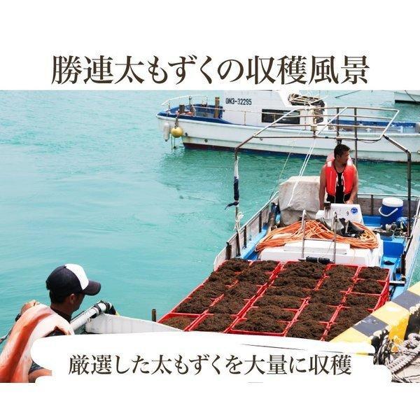 もずく 沖縄県産 メール便送料無料 500g 1000円ポッキリ!セール 名産地「勝連産太もずく」2セット以上ご購入でオマケ!|もずく|※日時指定はできません。|edoya13|05